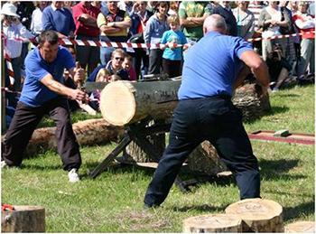 Lumberjack display