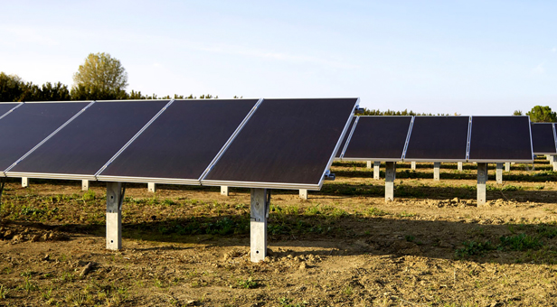 Here comes the sun: An example of PV panels used in a solar power farm