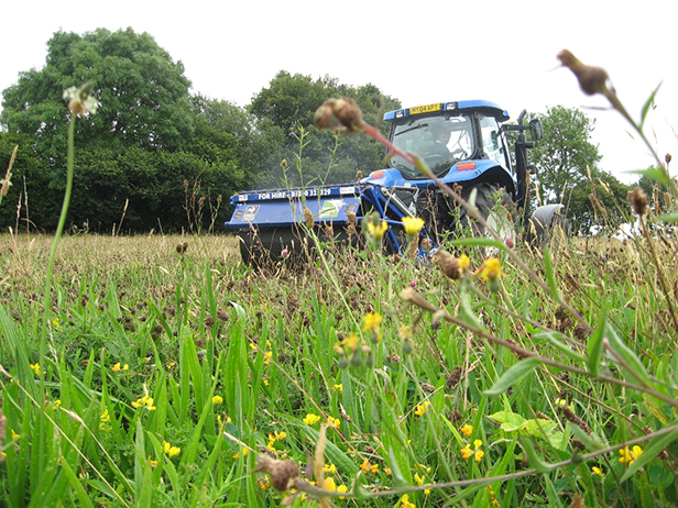 Gathering wild seed at Pastures New courtesy of Dorset Wildlife Trust