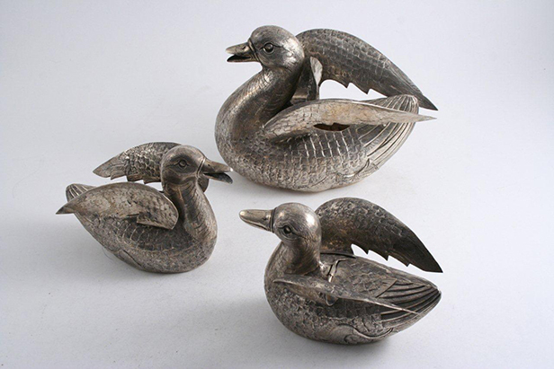 Indian silver ducks