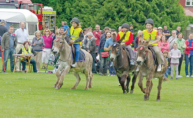 Donkey Derby at the Broadstone Summer Jam