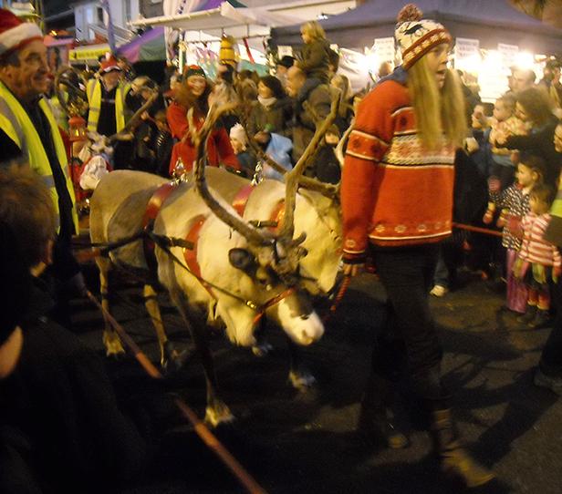 Christchurch reindeer parade