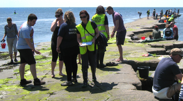 Wardens at Kimmeridge Bioblitz © Chris Fryatt
