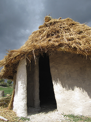 One of the prototype Neolithic houses, which will now be used to help build the final five houses at Stonehenge