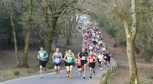 Run-Rabbit-Marathon