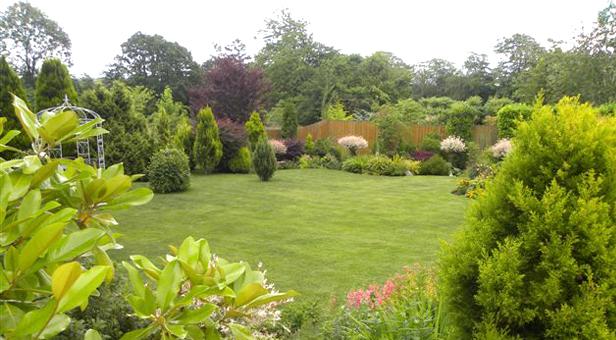 Wimborne-Garden