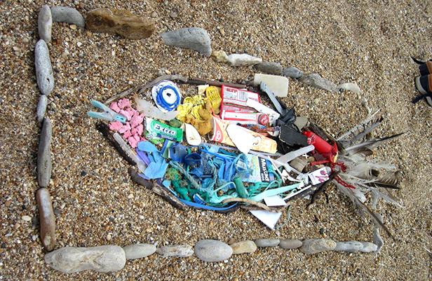 Fish made from beach litter
