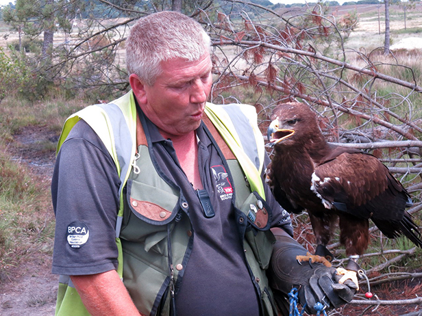 Russian Steppe Eagle and falconer James Moore