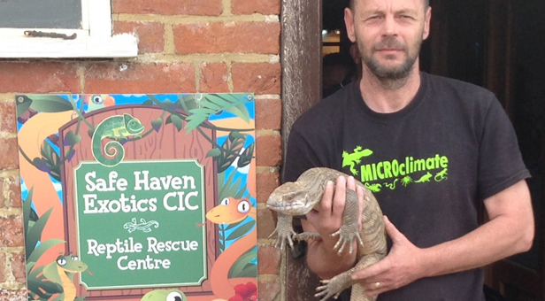 """Safe Haven Exotics Manager Marc Harris pictured at the rescue centre with Pancake, a Bosc's monitor lizard"