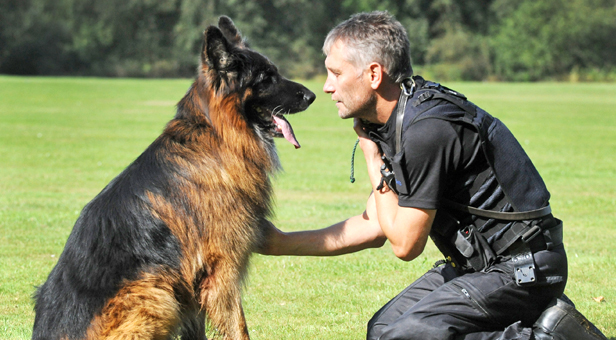 Tango and Police Constable Steve Budd