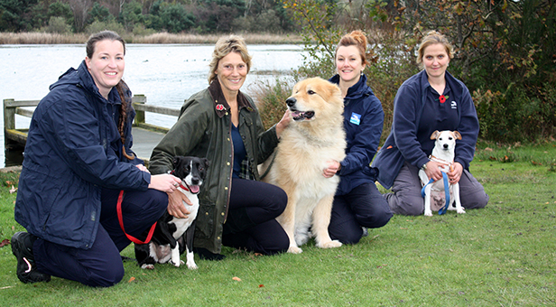 Cllr Dion with Pooles dog wardens