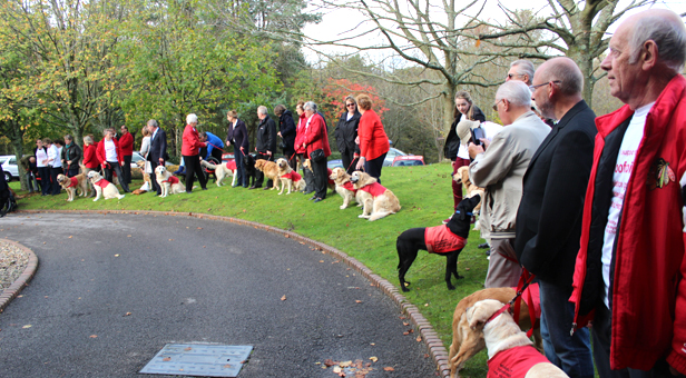 Assistance dogs gather for Jenny Clarke's funeral