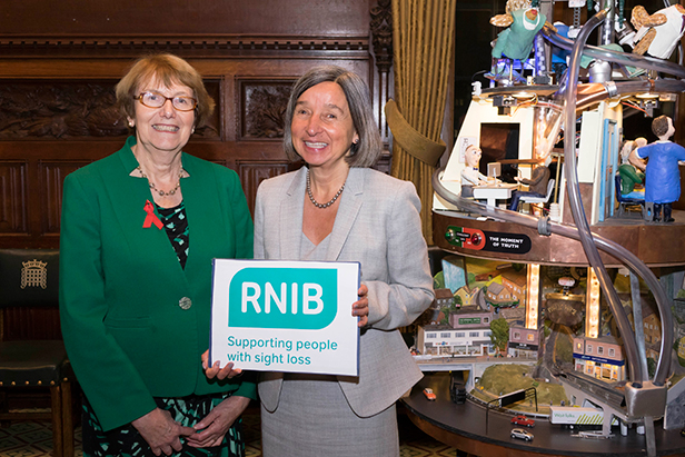 Annette Brooke MP at the launch