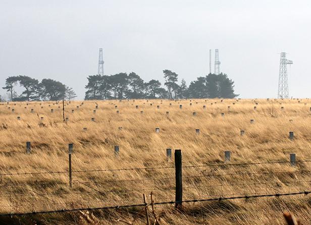 Rampisham site from Hooke Road