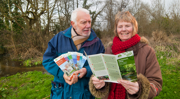 New Forest walks with a difference