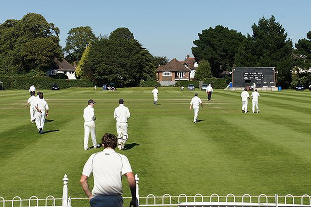 Festival of Cricket