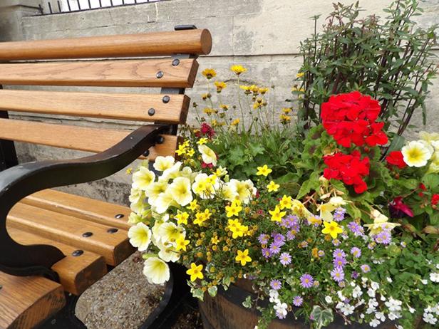 Wimborne In Bloom 2015
