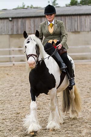 Rescue pony Shanly