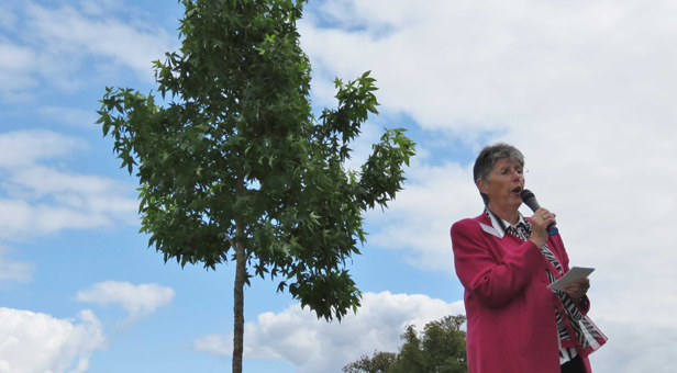 Mrs Mary Fielding, Chairlady of the Bournemouth and Poole National Trust Association, opening the tree planting by the Liquidambar at Kingston Lacy © National Trust