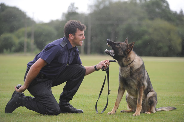 Police dog Acer and PS Andy Wallbridge