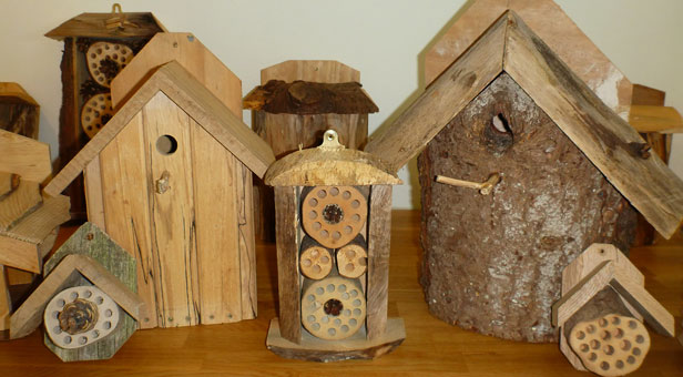 Bird-Boxes