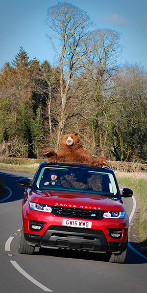 Range-Rover-provides-bear-necessities-post
