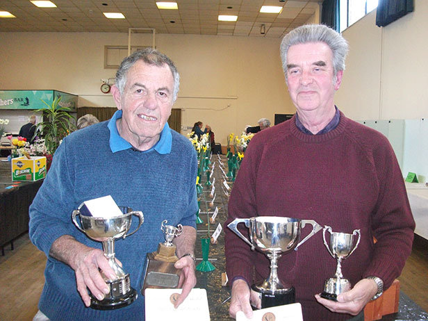 Wimborne Horticultural Society