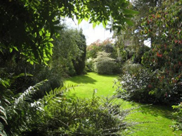 Cherry Tree Nursery open garden