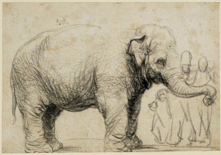 Rembrandt's Asian Elephant