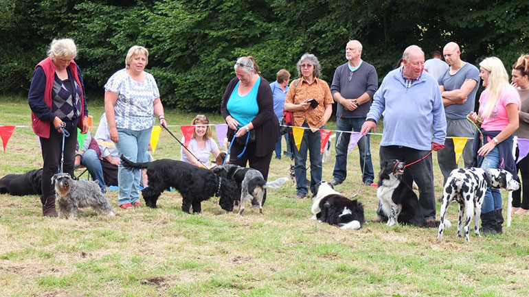 Wimborne Rotary's fun dog show