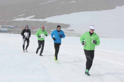 On the run - Arctic style