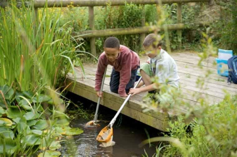 Dorset Wildlife Trust (DWT) celebrates welcome change of the seasons