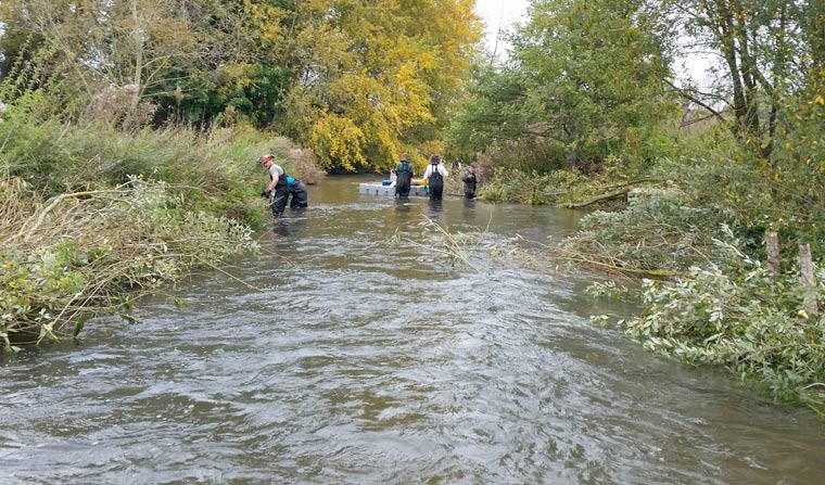 The Environment Agency praised for ambitious restoration project on Hampshire's River Avon