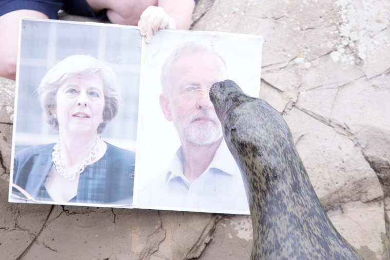 2017 General Election seal of approval given to Jeremy Corbyn
