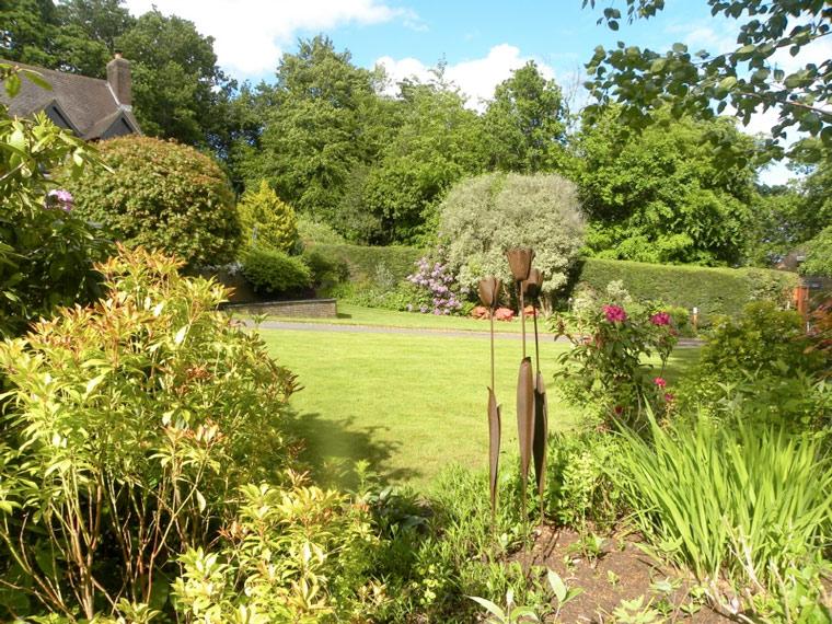 Garden open for Wimborne in Bloom