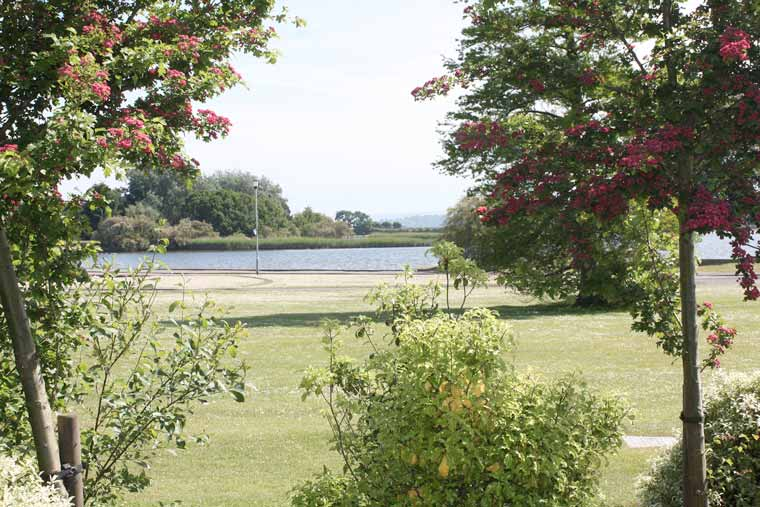 Poole Park improvements backed by councillors