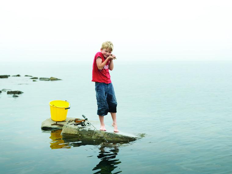 Public urged to protect Dorset's amazing sea life