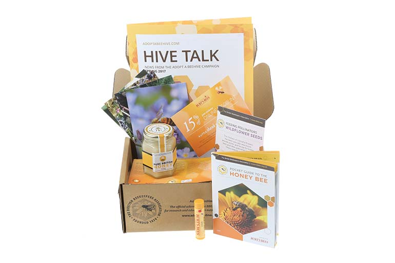 British Beekeepers Association Adopt a Beehive set