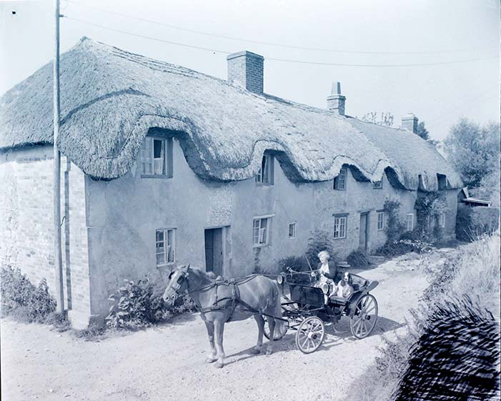Cottages in East Chaldon