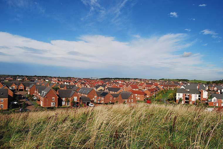 Houses alongside green space