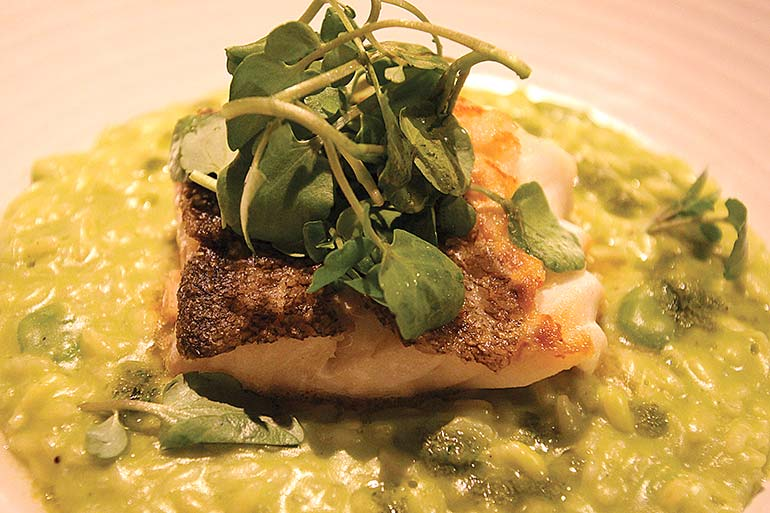 Pan-roasted cod loin at The White Buck