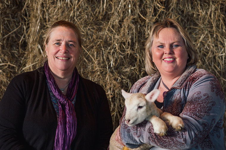Dorset Agricultural Society new chair and vice chair