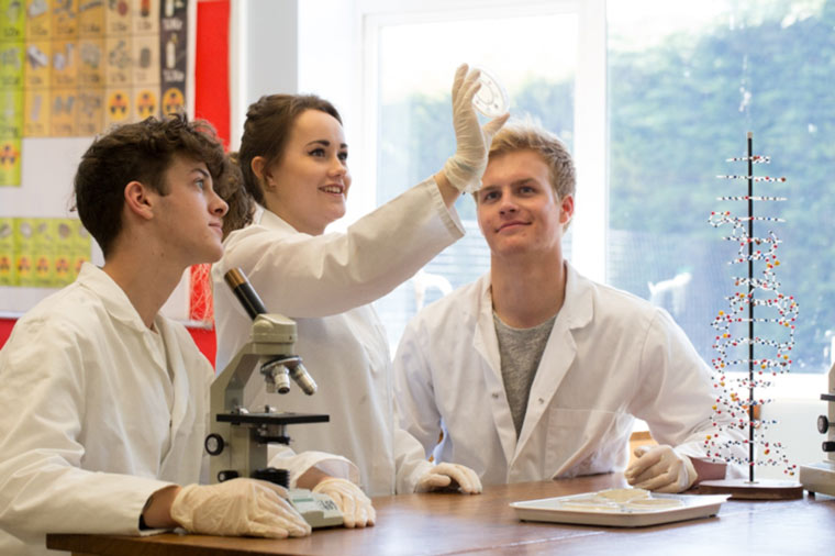New paid internship programme at Ringwood School