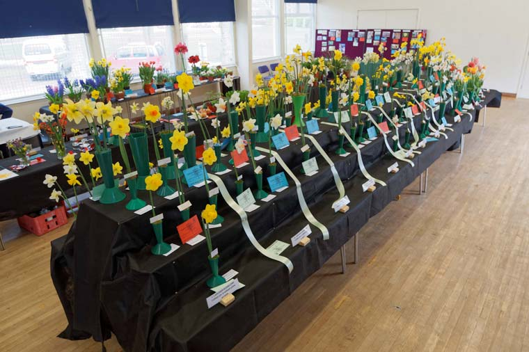 Dorset Agricultural Society to host annual Spring Show