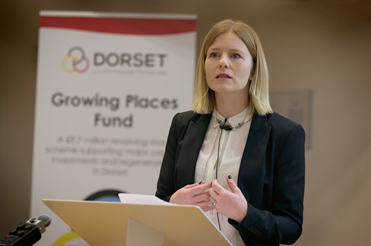 Vision for Dorset