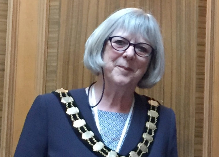 New Shadow Dorset Council formed