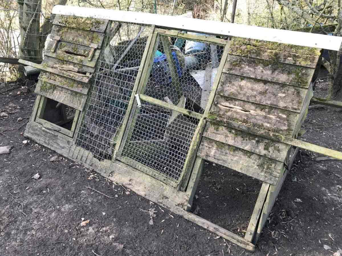 Dorset smallholder banned from keeping poultry and pigs for 10 years
