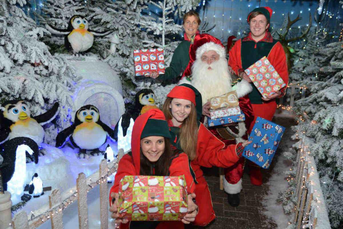 Meet real reindeer at Santa's Winter Wonderland in Dorset