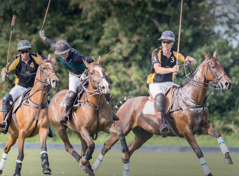 Dorset Polo Festival returns with a range of fun activities for all the family