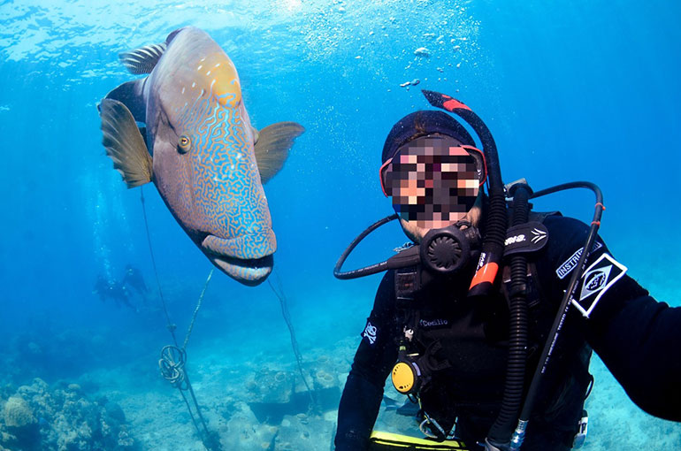 Diver photo recovered from stolen USB